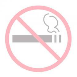 APLI 11535 Пушенето забранено - самозалепващ знак за витрина