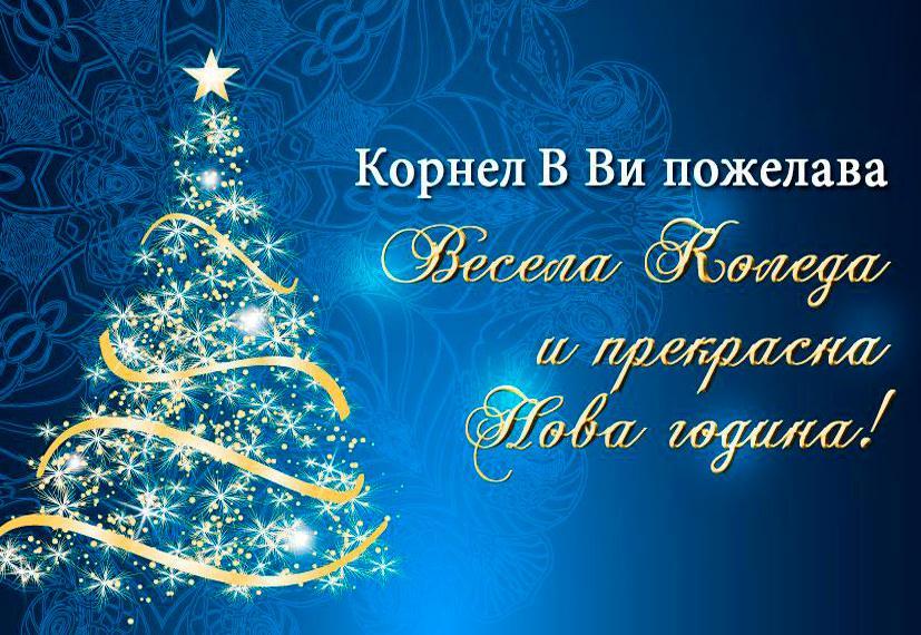 Весела Коледа и прекрасна Нова година!